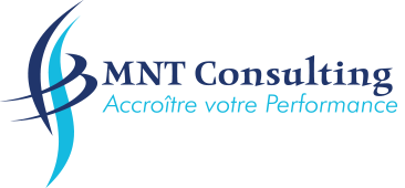 Logo MNT-consulting